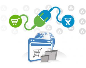 eCommerce Plugin development 28 May 20131